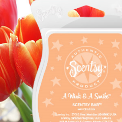 A Wink and A Smile Scentsy Bar