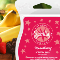 BananaBerry Scentsy Bar