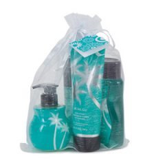 Jet, Set, Go! Scentsy Personal Care Kit