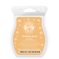 Absolutely Apricot Scentsy Bar