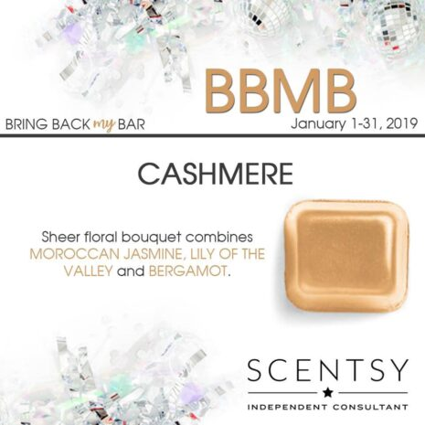 Cashmere Scentsy Bar