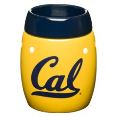 Cal Scentsy Warmer