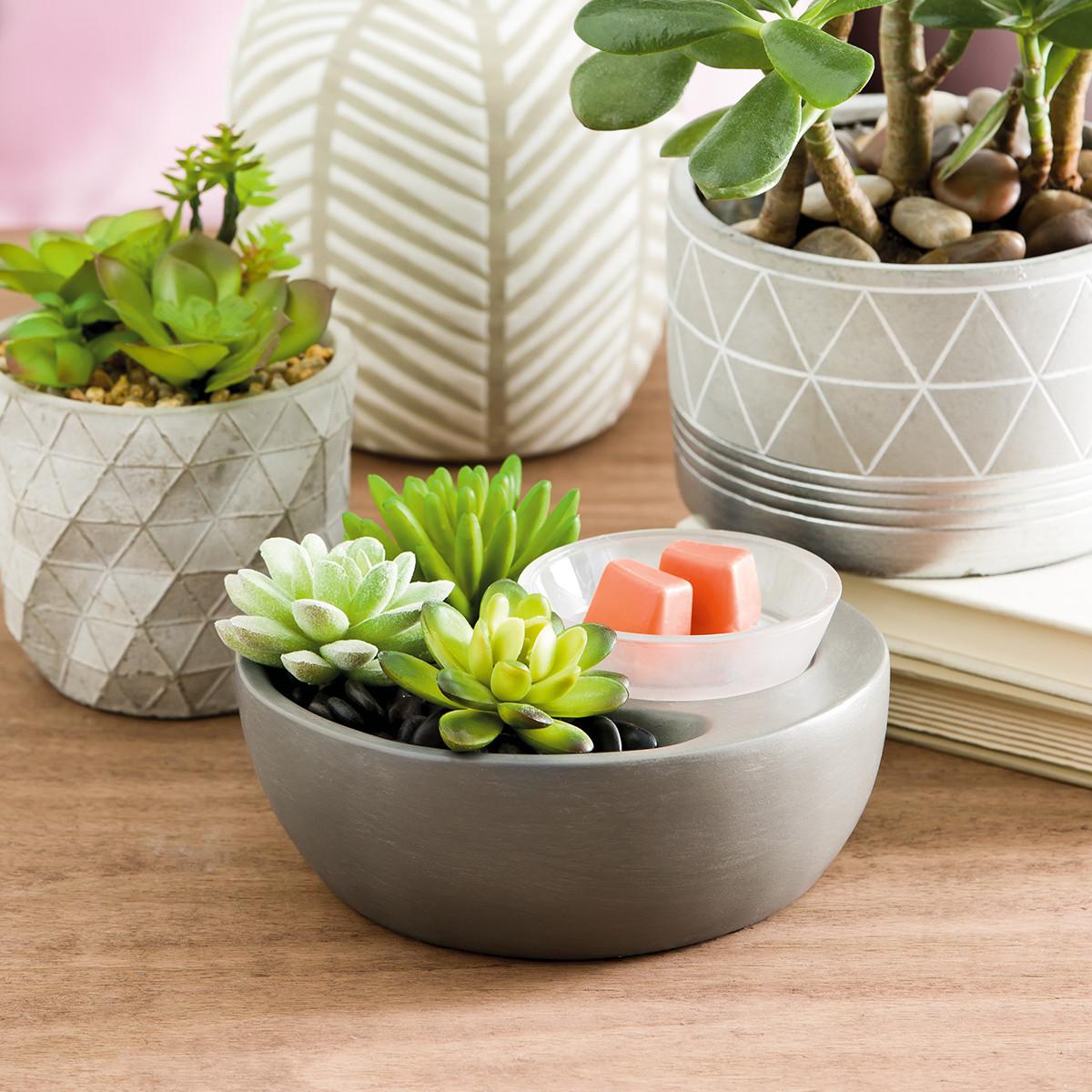 little garden scentsy warmer scentsy online store - Little Garden