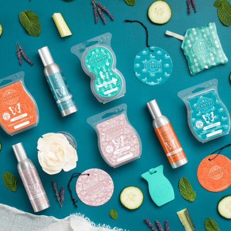 Scentsy Bars Products