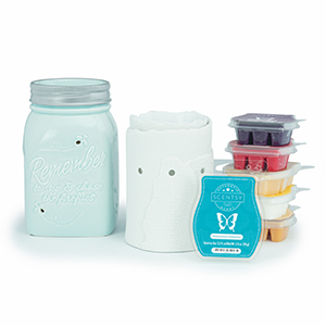 Buy Perfect Scentsy Combined