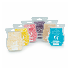 Scentsy Bar 6 Pack