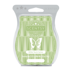 White Tea Cactus Scentsy Bar