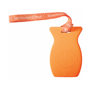 Scentsy Sunkissed Citrus Car Bar