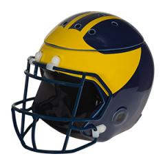University of Michigan Football Helmet Warmer
