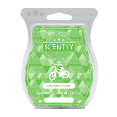 Scentsy Wild What-A-Melon Bar