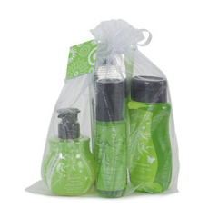 Serene Green Scentsy Personal Care Kit