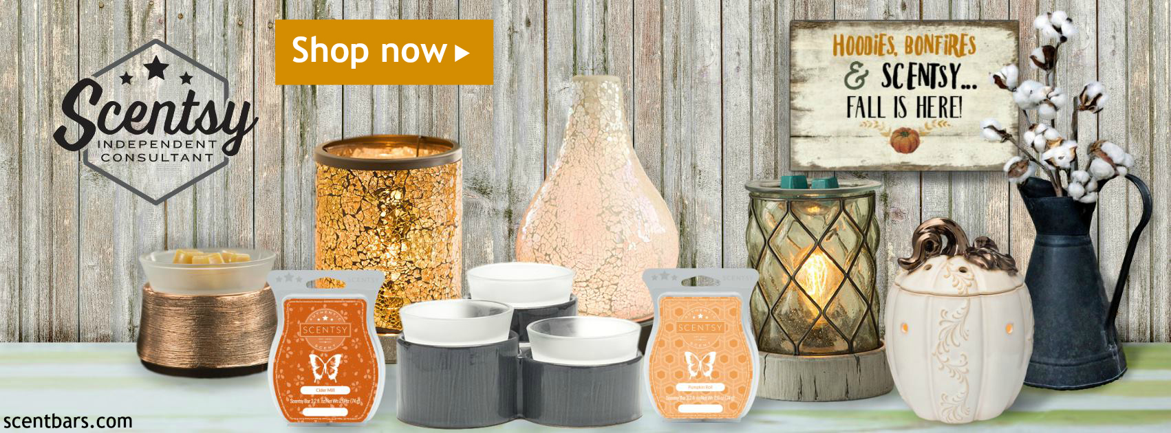 Buy Scentsy Warmers