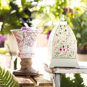 Butterfly Atrium Scentsy Warmer