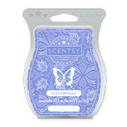Forest Wildflowers Scentsy Bar