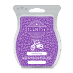 Gleeful Grape Scentsy Bar