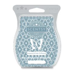 BERGAMOT AND SOLAR DRIFTWOOD SCENTSY BAR