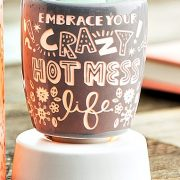 Crazy Hot Mess Scentsy Warmer