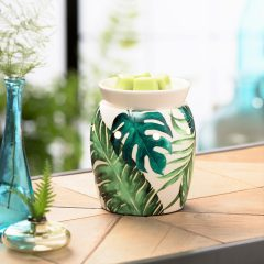 Rainforest Fern Scentsy
