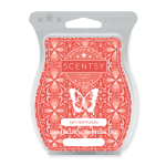 LET'S GET PUNCHY SCENTSY