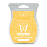 PEACH & WHITE AMBER (NO. 82) SCENTSY BAR