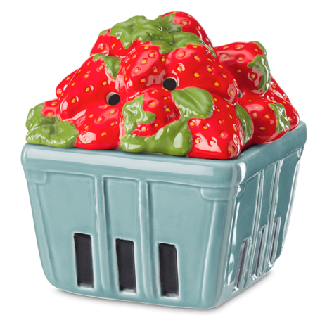 STRAWBERRY BASKET WARMER