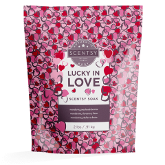Lucky In Love Scentsy Soak