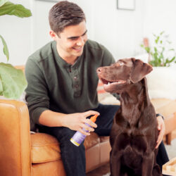 Scentsy Dog Deodorizer