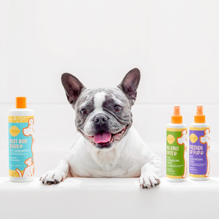 Introducing Scentsy Pets!