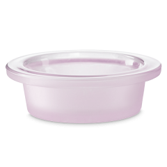 Everything I Am Scentsy Warmer DISH ONLY