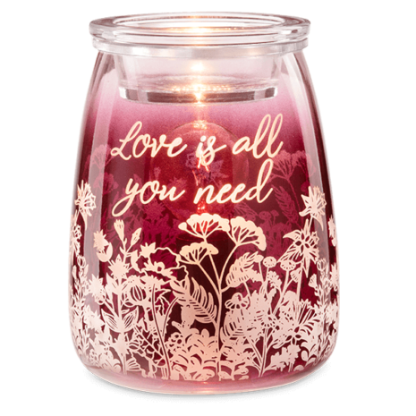 Love Is All You Need Warmer