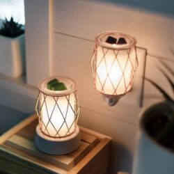 Wire You Blushing Mini Scentsy Warmer