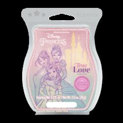 Disney Princess True Love Awaits Scentsy Bar