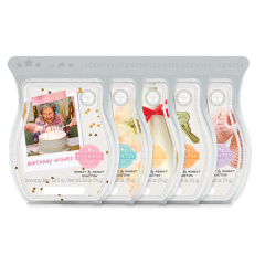 Moment by Moment 5 Bar Bundle